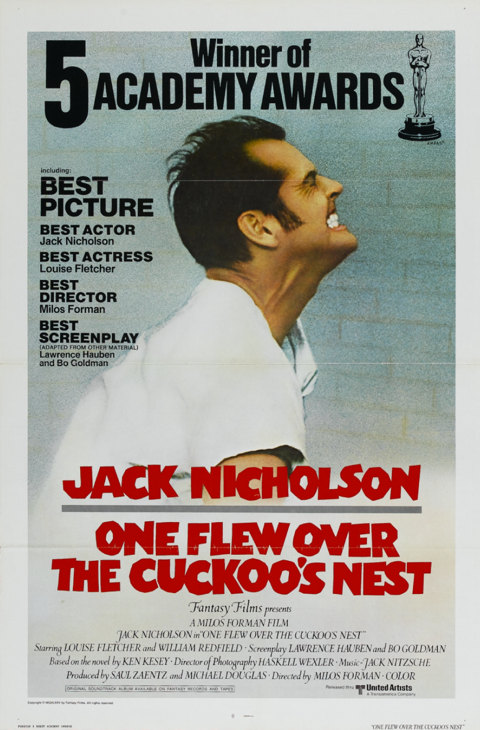 one flew over the cuckoos nest essays